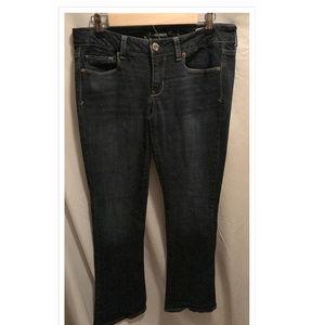 Size 12 Reg American Eagle Jeans Skinny Kick